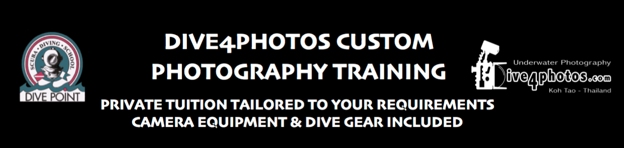 Dive4Photos-Custom-Photography-Training